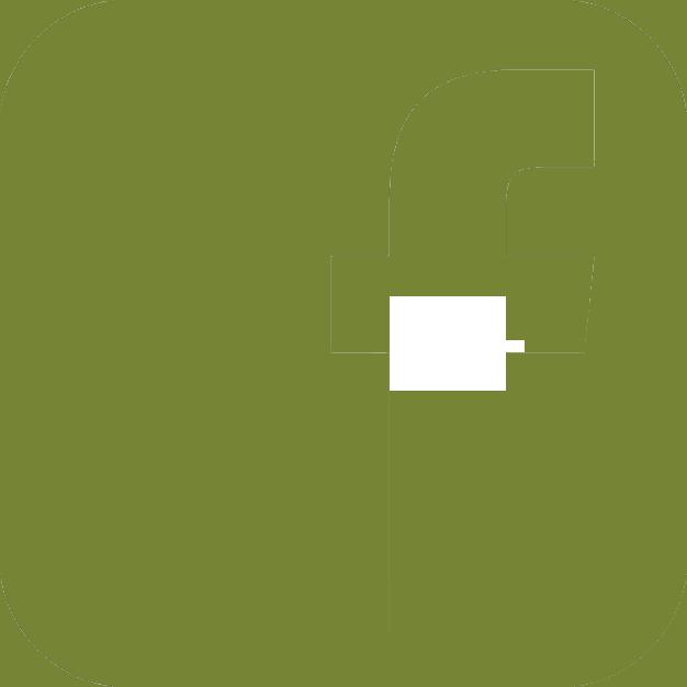icone_face